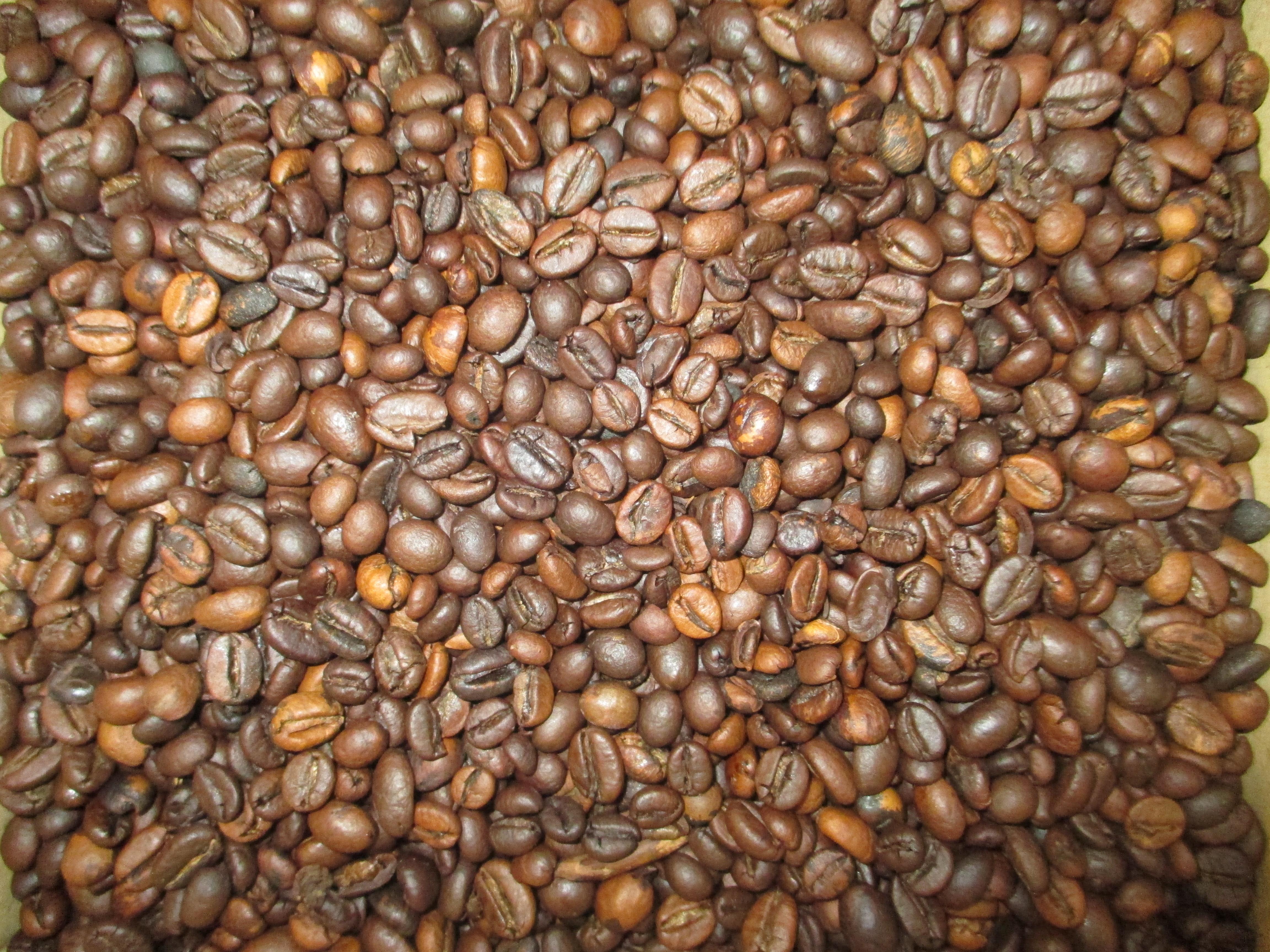 ziarna-kawy-chmielewski